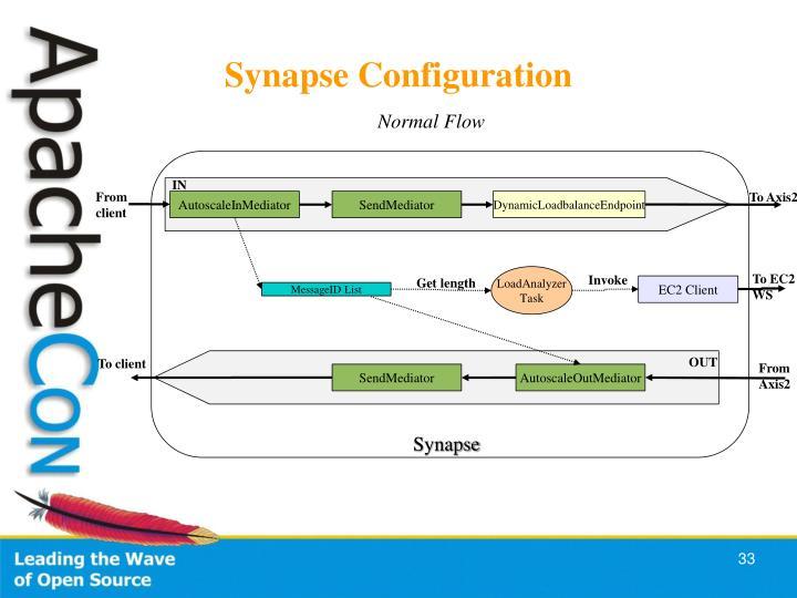 Synapse Configuration