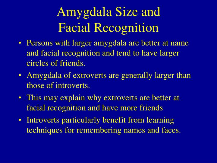 Amygdala Size and