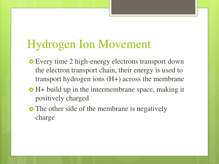 Hydrogen Ion Movement