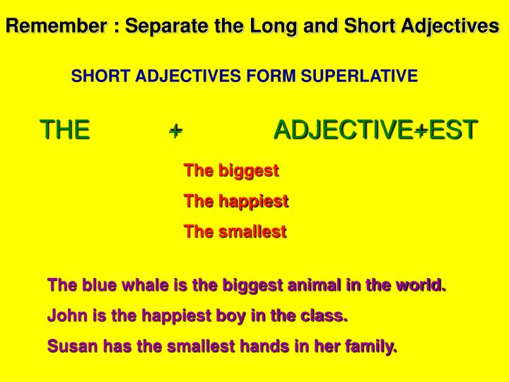 Remember : Separate the Long and Short Adjectives