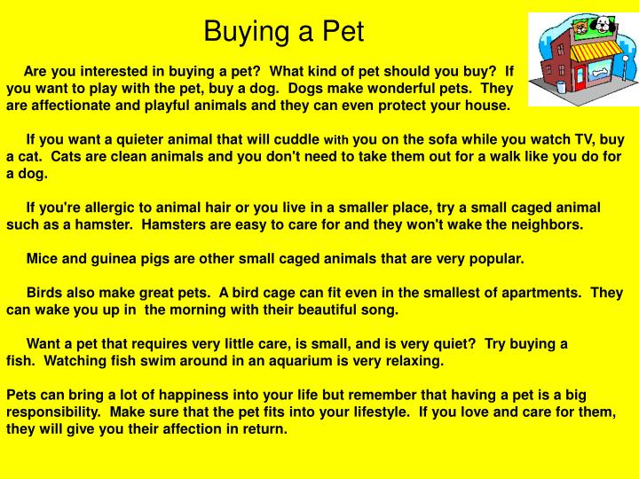Buying a Pet