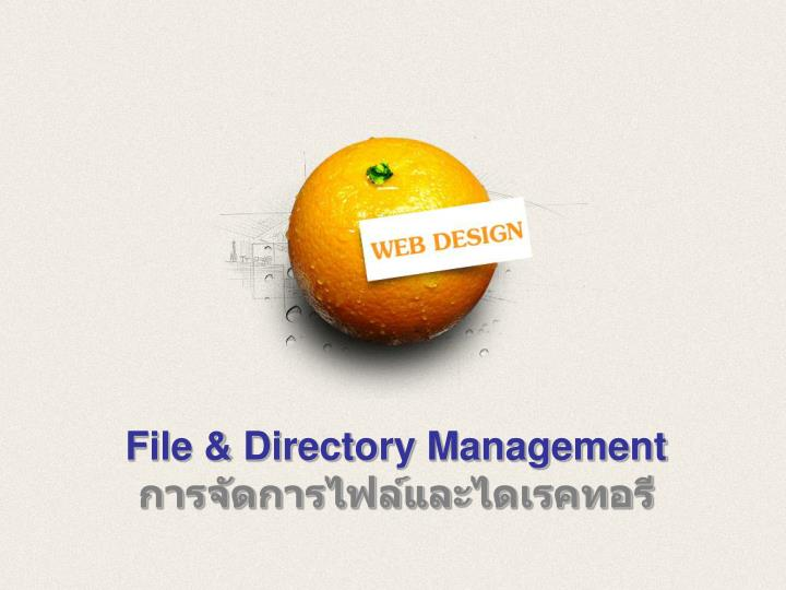 File directory management