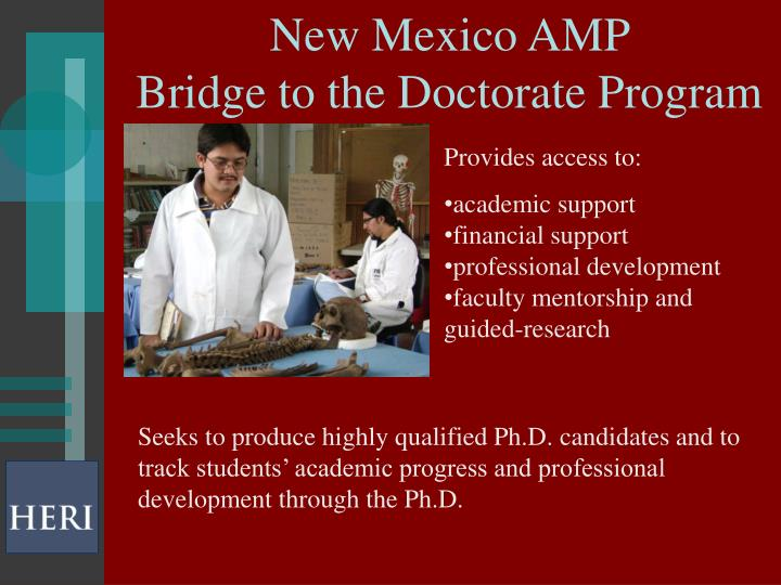 New Mexico AMP
