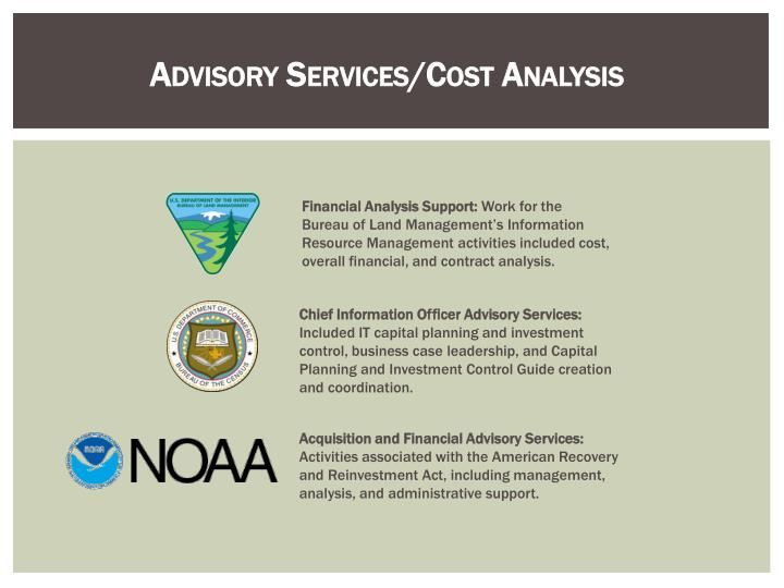 Advisory services cost analysis