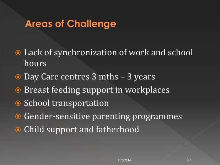Areas of Challenge