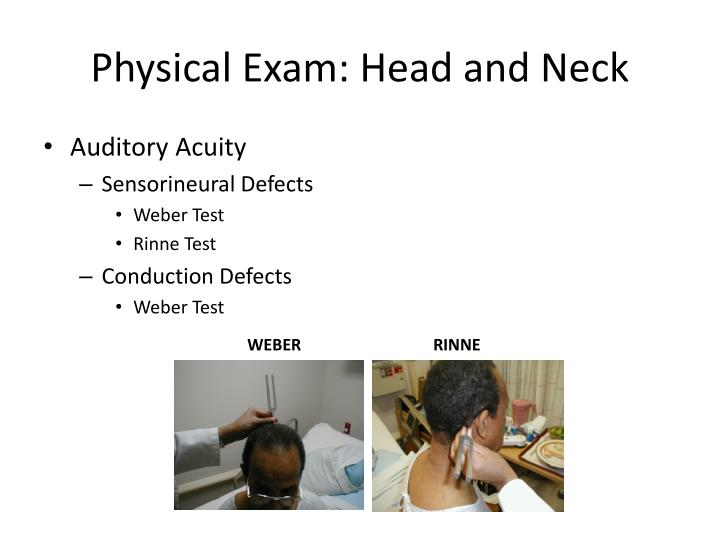 Physical Exam: Head and Neck
