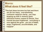 mania what does it feel like