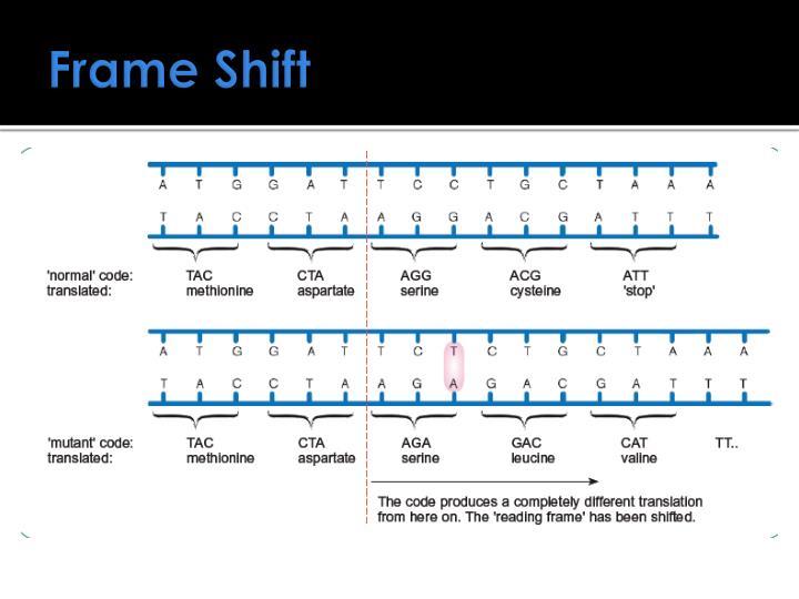Frame Shift