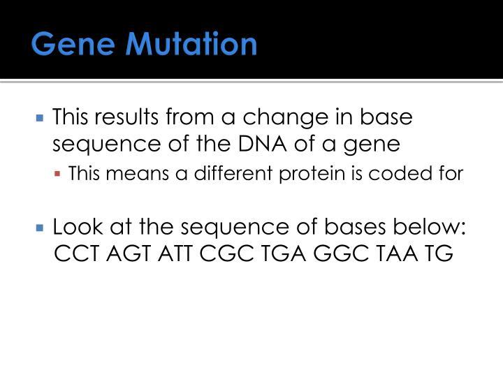 Gene Mutation