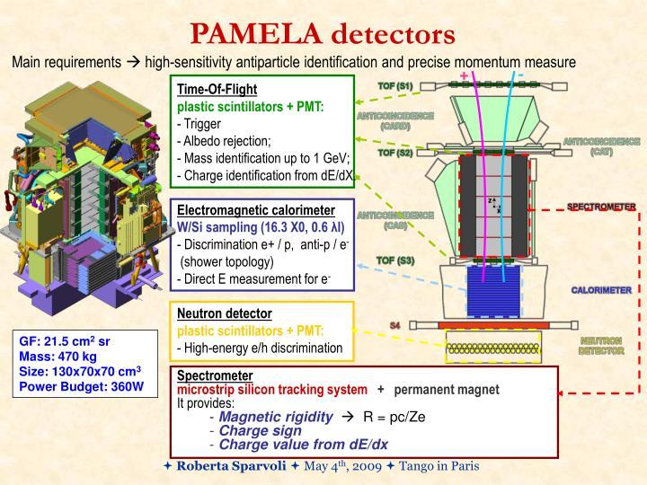 Pamela detectors