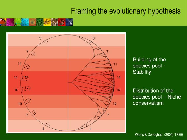 Framing the evolutionary hypothesis