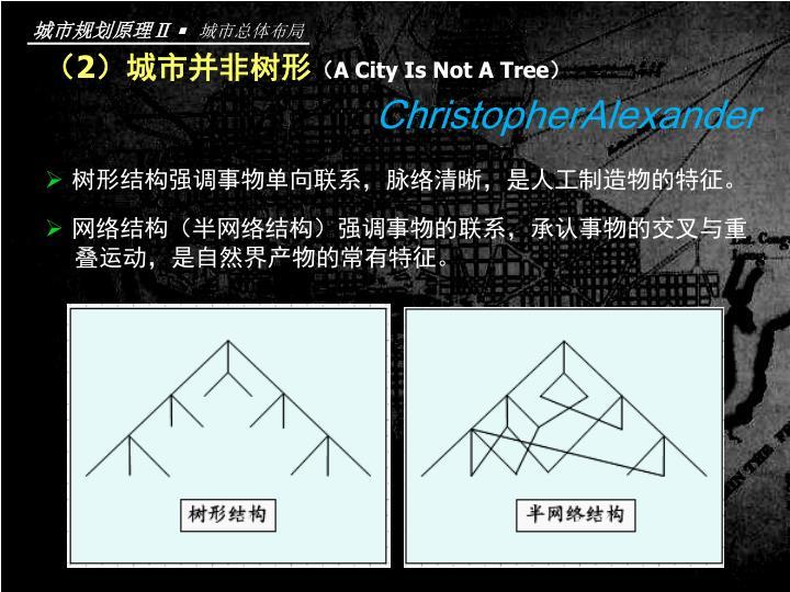 (2)城市并非树形