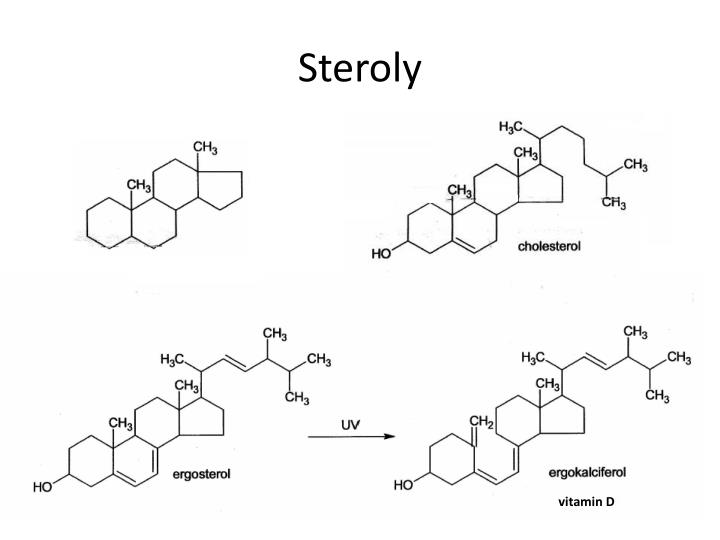 Steroly