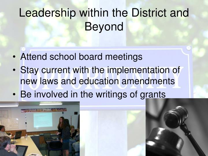 Leadership within the District and Beyond