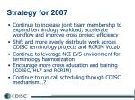 strategy for 2007