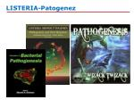 listeria patogenez