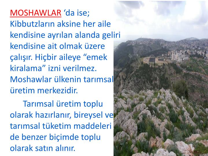 MOSHAWLAR