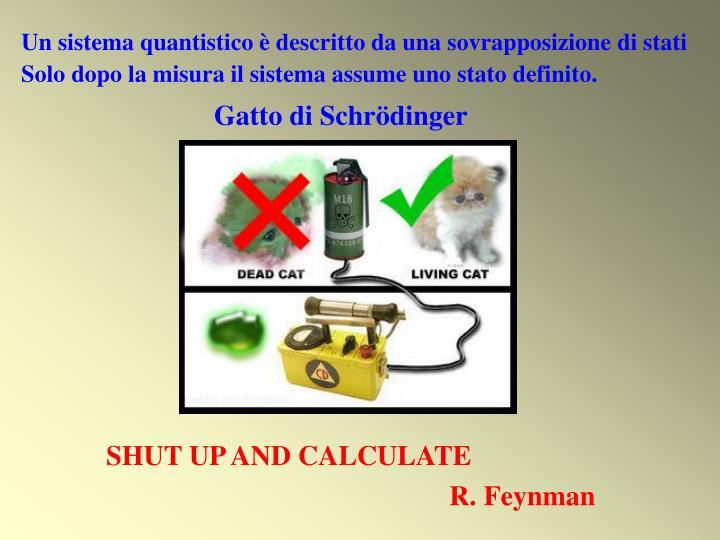 Un sistema quantistico è descritto da una sovrapposizione di stati