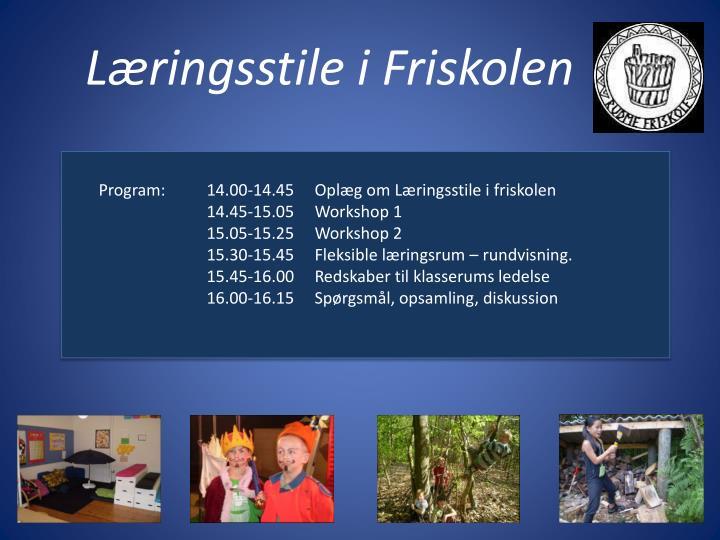 Læringsstile i Friskolen