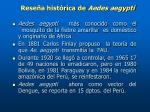 rese a hist rica de aedes aegypti