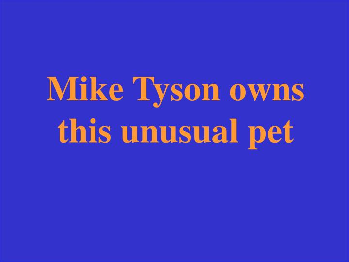Mike Tyson owns this unusual pet