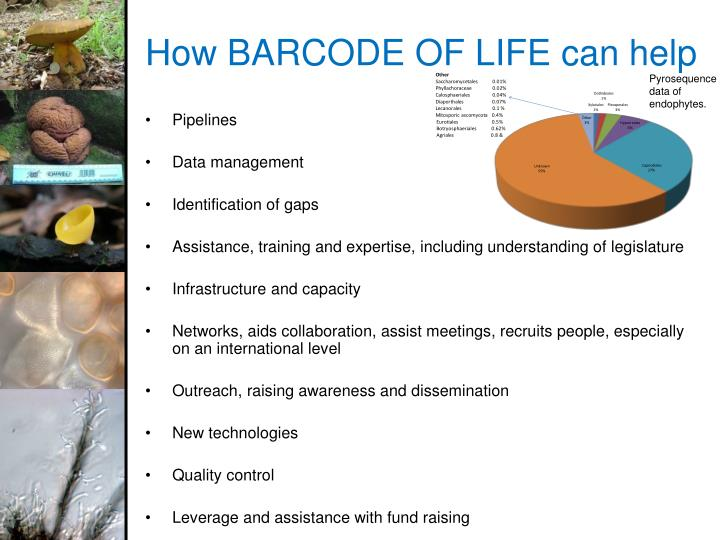 How BARCODE OF LIFE can help