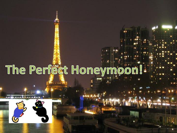 The Perfect Honeymoon!