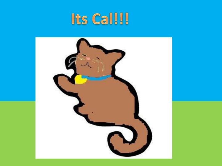 Its Cal!!!
