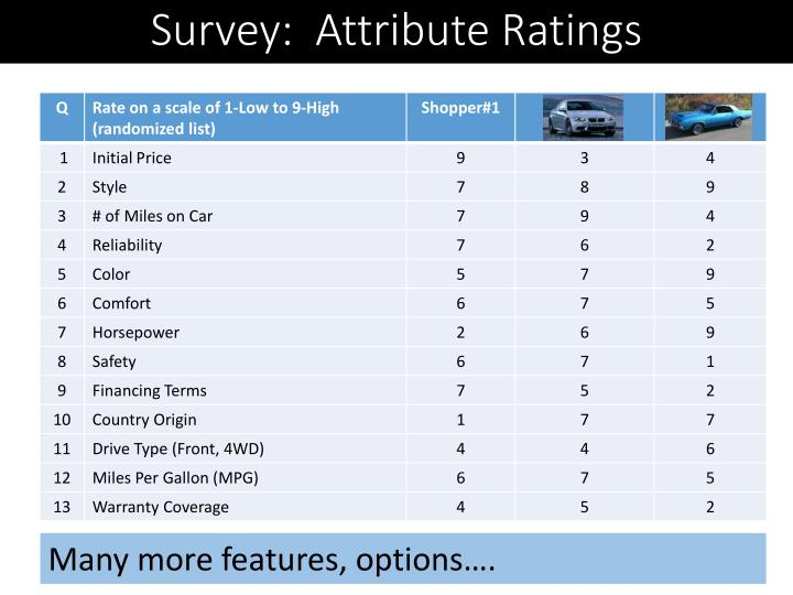 Survey:  Attribute Ratings