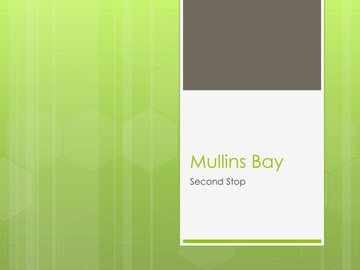 Mullins Bay