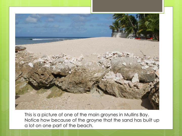 This is a picture of one of the main groynes in Mullins Bay. Notice how because of the groyne that the sand has built up a lot on one part of the beach.