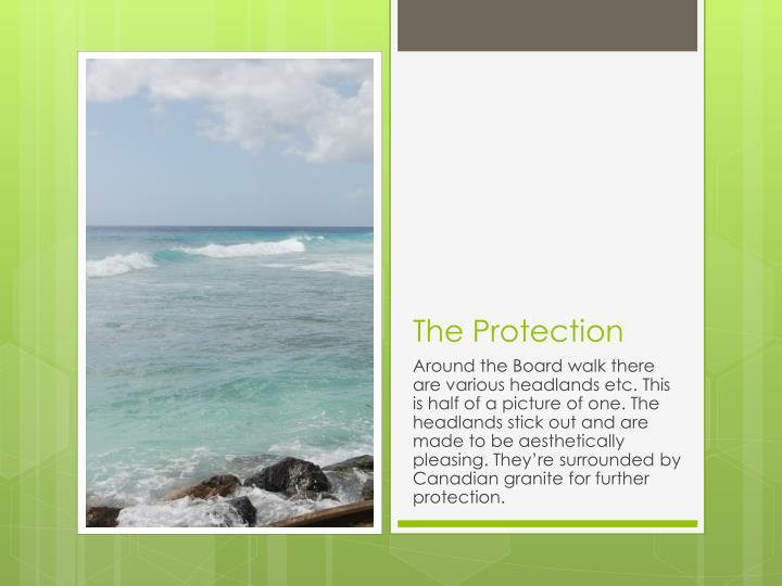 The Protection