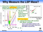 why measure the lsp mass
