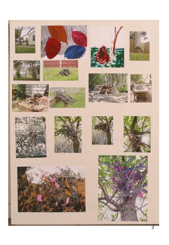 Ncea level 3 visual arts 2007