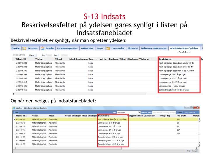 S-13 Indsats