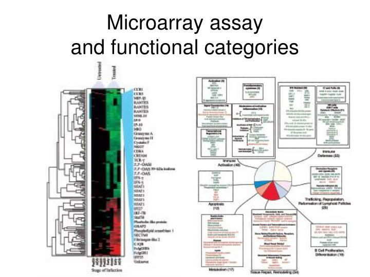 Microarray assay