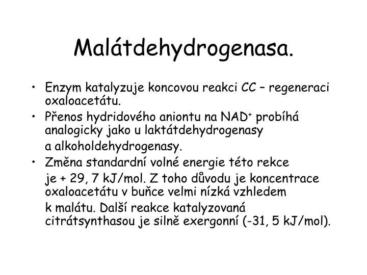 Malátdehydrogenasa.