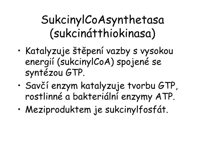 SukcinylCoAsynthetasa (sukcinátthiokinasa)