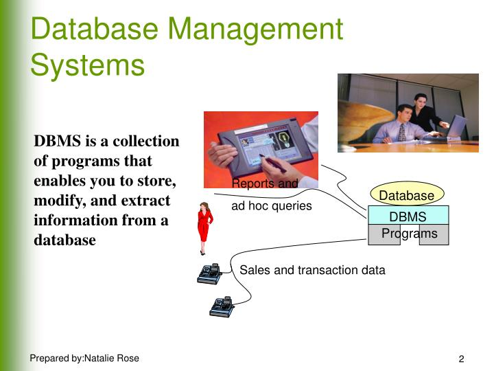 comparison of database management system and information For those interested in information technology, the wealth of specializations within the field can be a bit confusing two of these specializations, computer information systems (cis) and management information systems (mis), sound similar but play different roles in the information technology field.