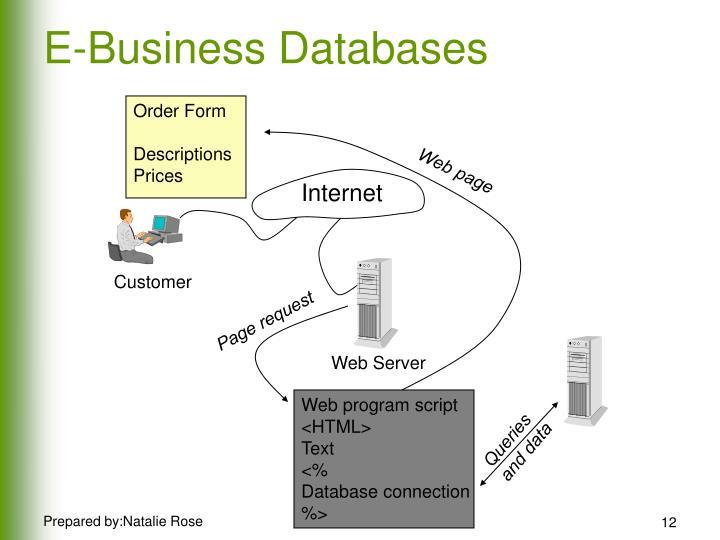 E-Business Databases