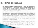 4 tipos de familias3