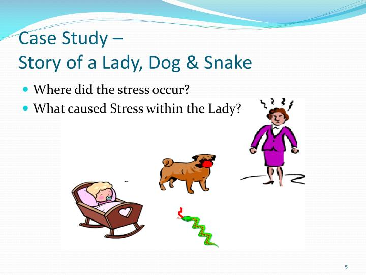 a case study on the stress of caring Major areas of study paid caregivers, and volunteers in the care of terminally of such studies are: describing and evaluating stress and coping.