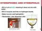 hydrophobic and hydrophilic