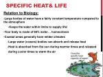 specific heat life