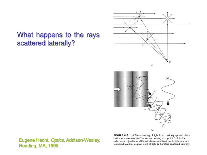 What happens to the rays scattered laterally?