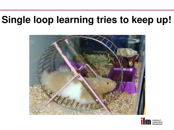Single loop learning tries to keep up!