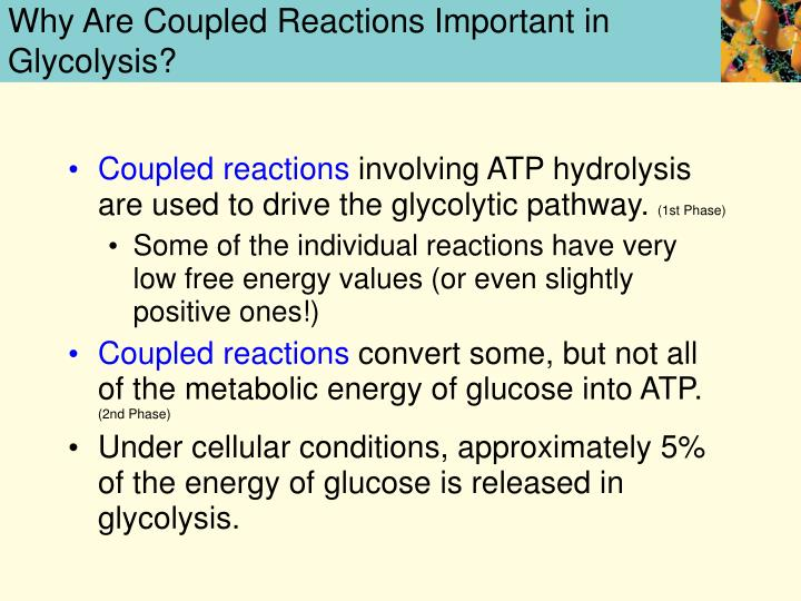 Why Are Coupled Reactions Important in Glycolysis?