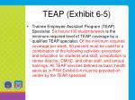 teap exhibit 6 5