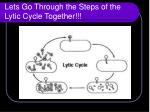 lets go through the steps of the lytic cycle together