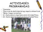 actividades programadas2